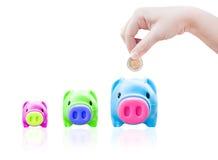 Junge Hand der Frauen, die Geldmünze in Einsparungsschwein, Finanzthema setzt Lizenzfreies Stockbild