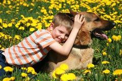 Junge, Hund und gelbe Wiese. Stockfotos
