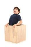 Junge im Kasten lizenzfreies stockfoto