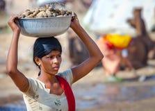 Junge indische Frau, die ein Becken auf ihrem Kopf des Kamelmists trägt Stockbild