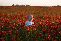 Junge innerhalb des roten Mohnblumefeldes Lizenzfreie Stockbilder