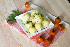 Junge Kartoffel Stockfoto