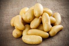 Junge Kartoffeln auf einem Segeltuch Lizenzfreie Stockfotos