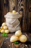 Junge Kartoffeln in einem Sack Lizenzfreie Stockfotos