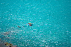 Junge Kayak fahrende Freunde, die Spaß in den szenischen AnsichtSommerferien haben Lizenzfreies Stockbild