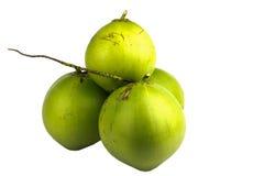 Junge Kokosnüsse auf weißem Hintergrund Lizenzfreie Stockfotografie