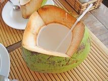 Junge Kokosnuss Stockbilder