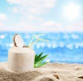 Junge Kokosnuss im Sand am Strand stockbilder