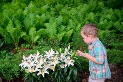 Junge kontrolliert weiße Lilien während einer Ei-Jagd Lizenzfreie Stockfotografie