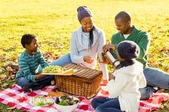 Junge lächelnde Familie, die ein Picknick tut Stockfoto