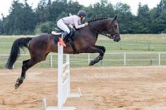 Junge langhaarige blonde Reiterin, die ein dunkles Pferd springt Lizenzfreie Stockfotografie