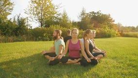 Junge Leute, die draußen meditieren stock footage