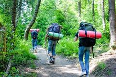 Junge Leute, die mit Rucksäcken im Wald wandern Lizenzfreie Stockbilder