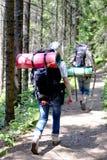 Junge Leute, die mit Rucksäcken im Wald wandern Lizenzfreies Stockbild