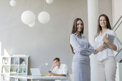 Junge Leute im Büro Lizenzfreies Stockfoto