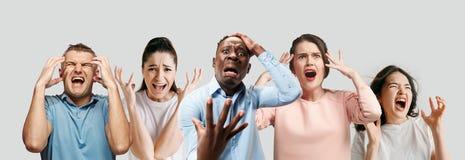 Junge Leute im Druck lokalisiert auf weißem Studiohintergrund stockfotografie