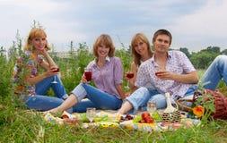 Junge Leute am Picknick Stockfotografie