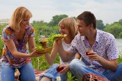 Junge Leute am Picknick Stockbild