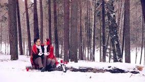 Junge Liebhaber, Paare, die Spaß in einem Winterwald haben stock video