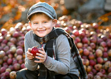 Junge mit Äpfeln Lizenzfreie Stockbilder