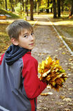 Junge mit Ahornblättern Stockfoto