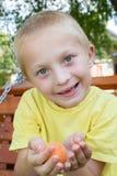 Junge mit Aprikose Stockbild