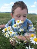 Junge mit Blumen Stockbild