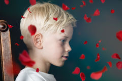 Junge mit den fallenden roten rosafarbenen Blumenblättern Stockbilder