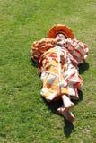 Junge mit der Klinge, die auf dem Gras liegt Stockbild