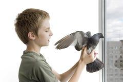 Junge mit der Taube stockfotos
