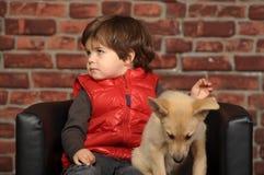 Junge mit einem Welpen stockfotografie