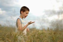 Junge mit etwas in der Hand Lizenzfreie Stockbilder
