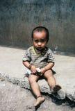 Junge mit Haustierratte Stockfotografie