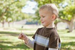Junge mit Löwenzahn Stockfotografie