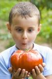 Junge mit riesiger Tomate Stockfotografie