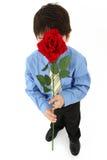 Junge mit Rose Stockfotos
