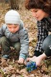 Junge mit seinen Muttersammelnblumen Stockbilder
