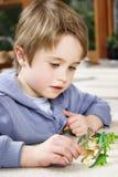 Junge mit Spielwaren lizenzfreies stockbild