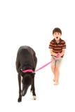 Junge mit Windhund über Weiß Lizenzfreie Stockbilder