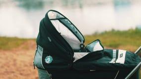 Junge Mutter im Kleiderrollenkinderwagen und -c$sprechen am Telefon am See sonnig stock footage