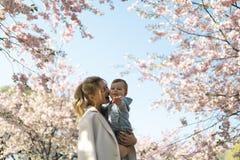 Junge Muttermutter, die ihr kleines Babysohn-Jungenkind unter bl?henden SAKURA Cherry-B?umen mit den fallenden rosa Blumenbl?tter stockfoto