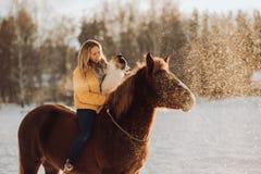 Junge nette Frau mit ihrem Hund border collie sitzen auf Pferd auf dem Schneegebiet auf Sonnenuntergang yrllow Kleid stockfotografie