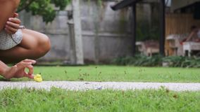 Junge nette Frau spielt aktiv mit gelbem Kätzchen auf Grasyard am Sommertag stock video footage