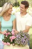 Junge Paar-Gartenarbeit Lizenzfreies Stockbild