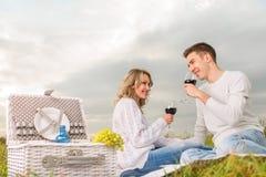 Junge Paare auf einem Picknick lizenzfreie stockbilder