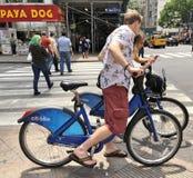 Junge Paare, die auf Citi-Fahrrad erforschen lizenzfreie stockbilder