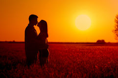 Junge Paare, die auf dem Gebiet des Weizens bei Sommersonnenuntergang küssen stockfotografie