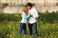 Junge Paare, die in der Wiese stehen Lizenzfreie Stockfotos