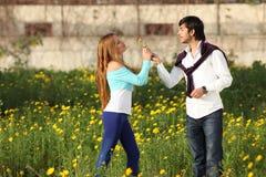 Junge Paare, die in der Wiese stehen Stockbilder