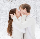 Junge Paare, die im Winterwald küssen Stockbild